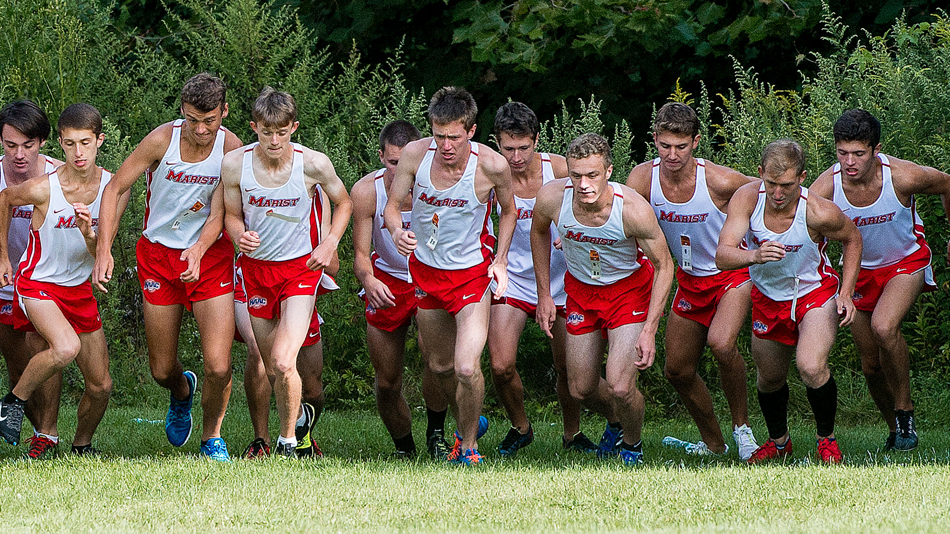 Cross Country Sends Split Squads To Metro Champ And Princeton